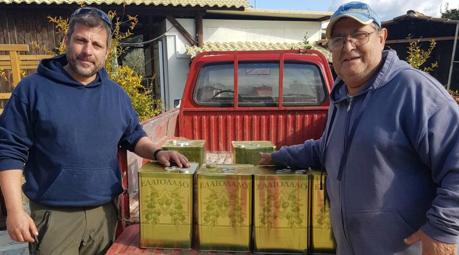 Frisches Olivenöl im Honigtal Farmland